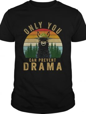 Only you can prevent drama Llama Camping Vintage funny gift TShirt