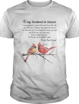 Bird To My Husband In Heaven I Was Supposed To Spend The Rest Of My Life shirt