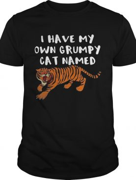 I Have My Own Grumpy Cat Named Tiger shirt