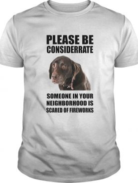 Please Be Considerate Someone In Your Neighborhood Is Scared Of Fireworks shirt