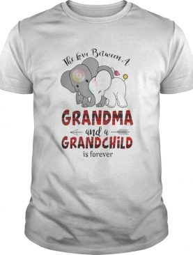 The Love Between A Grandma And A Grandchild Is Forever shirt