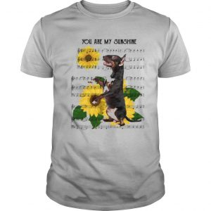 Bull Terrier You Are My Sunshine shirt